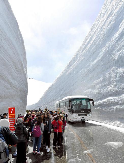 巨大な雪の壁を歩く「雪の大谷ウォーク」は6月下旬まで楽しめる=2018年4月16日、富山県立山町