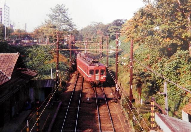 ヒメボタルが確認された大津町駅の構内=1975年