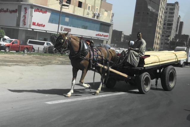 エジプトの馬車