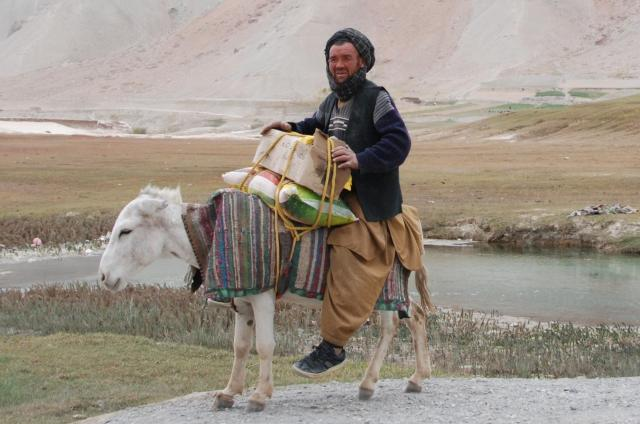 アフガニスタンのロバ