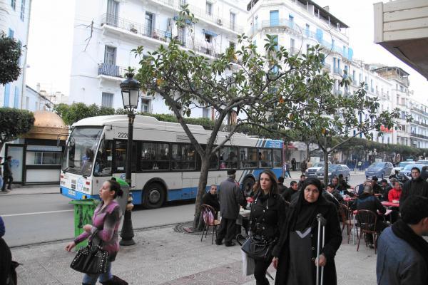アルジェリアの首都アルジェのバス