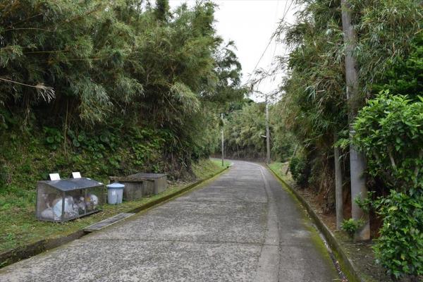 集落も竹で覆われていた