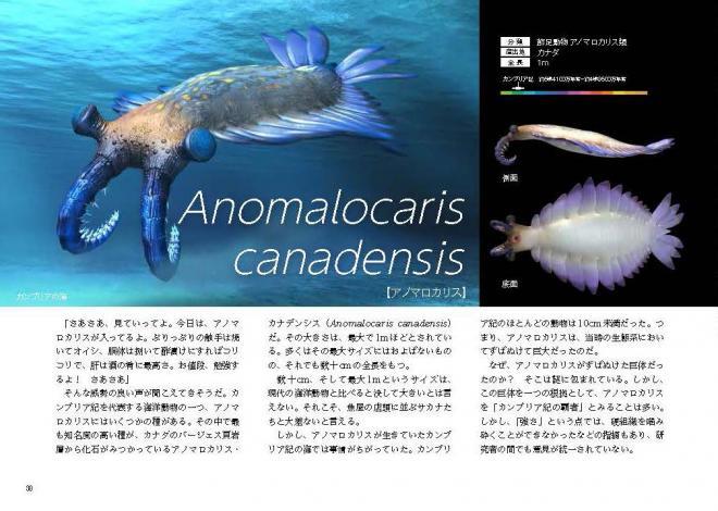 「アノマロカリス・カナデンシス」のページ