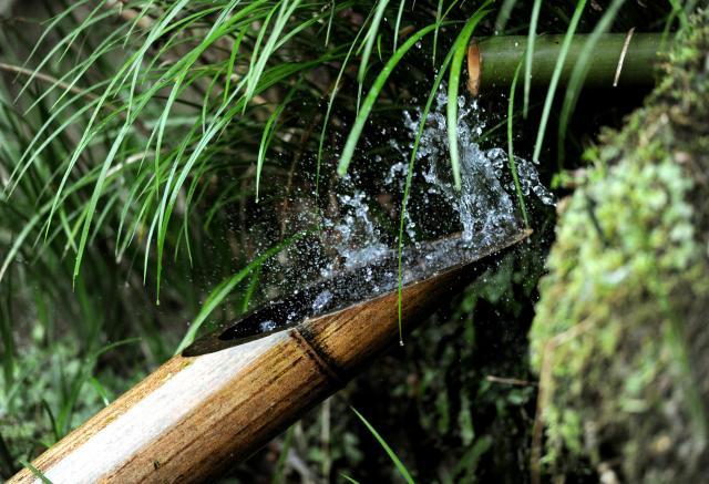 たまった水をはね上げる詩仙堂のししおどし=2011年、京都市左京区
