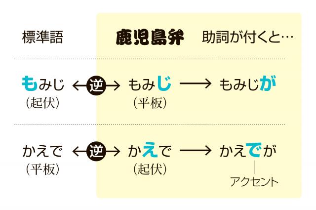 助詞がつくとさらに変化=デザイン・鈴木愛未