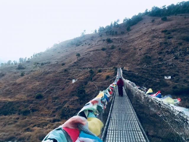 「プナカの吊り橋」。かなりワイルド……