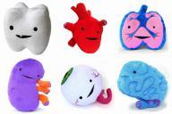 臓器をモチーフにしたぬいぐるみ「I Heart Guts」シリーズ