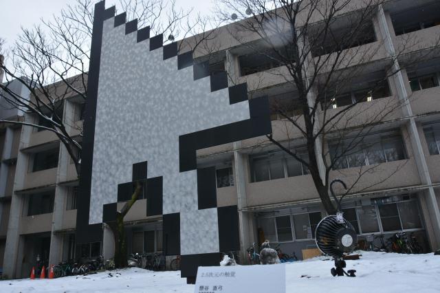 懸谷さんの作品「2.5次元の触覚」