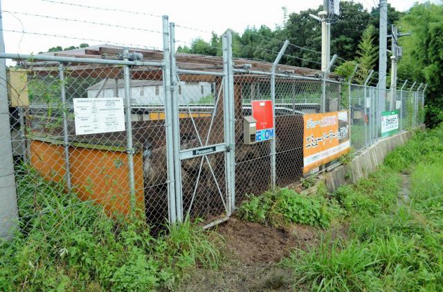 2羽目のエミューが発見された場所。別のエミュー4羽が檻の中にいた=2018年7月9日、佐賀県神埼市神埼町城原