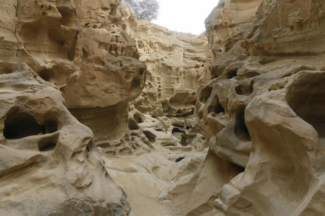 チャークフ峡谷