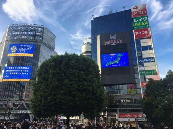 「渋谷のスクランブル交差点」を撮影。「日本に来た」感が出るスポットのようです。 ※写真はイメージです。撮影された写真を再現しています