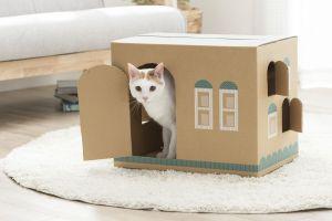 段ボールが「猫の家」に変身! 猫砂の梱包...