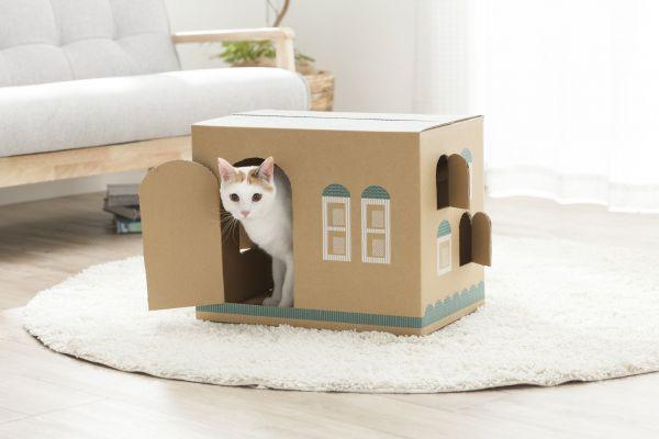 カインズのオリジナルブランド「Pet'sOne」の猫砂梱包用の段ボール。猫の家に変身します