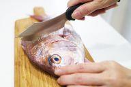 魚をさばいたことのない人でも簡単にさばけることを目指したサカナイフ