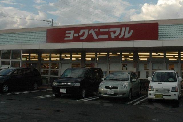 今年1月に一時休業に入ったヨークベニマル大和町店(画像の一部を加工しています)=2008年、仙台市