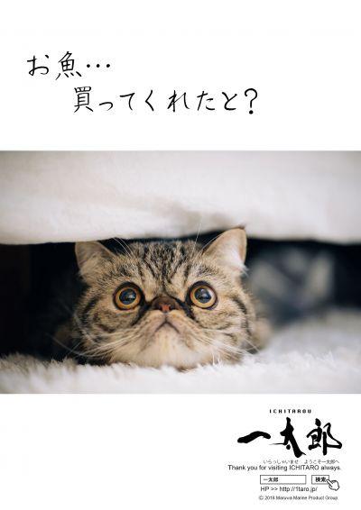 「お魚…買ってくれたと?」のポスター