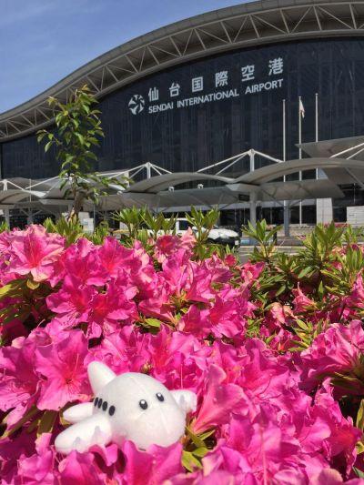 仙台国際空港の外観