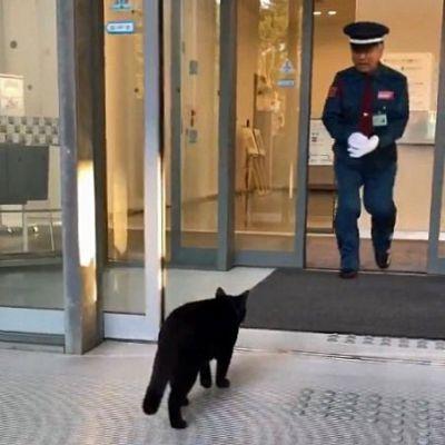 近づいて「入られんよ」と呼びかける警備員