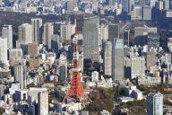 東京と奈良で比べてみました