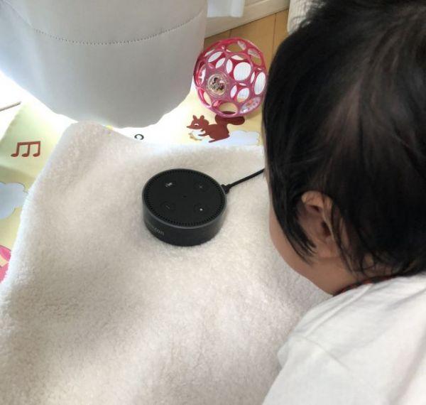 寝室だけでなく、リビング用にもスマートスピーカーを購入。娘もじっと見ています