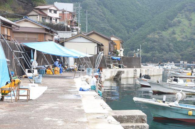 三重県尾鷲市須賀利町は、尾鷲市の飛び地にある小さな漁村だ=2017年10月
