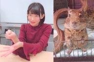 アニメ「けものフレンズ2」に出演する声優・本宮佳奈さん。外来動物のデグー「きすけ」(右)を溺愛する理由と、育てる覚悟について深掘りしました