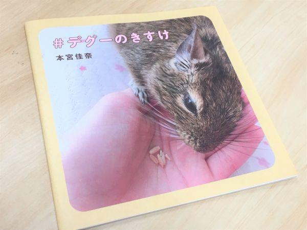 きすけの写真集「#デグーのきすけ」。本宮さん自ら撮影を手がけ、飼育情報なども盛り込んだ。昨年夏に同人誌即売会「コミックマーケット」で販売すると、多くの人が買い求めた=神戸郁人撮影