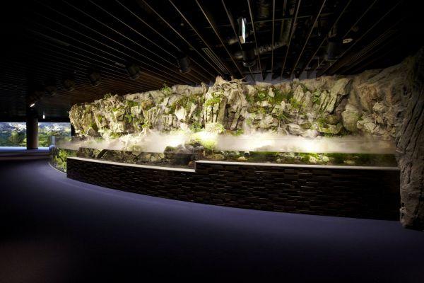 鴨川を模した日本最大級のオオサンショウウオの展示水槽