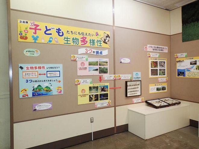 企画展「子どもたちにも伝えたい生物多様性」の様子
