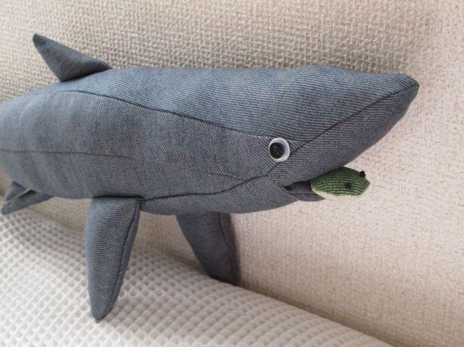 こちらはヨシキリザメ
