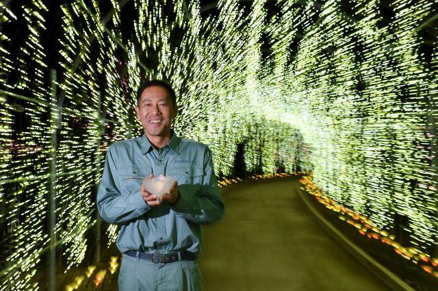 キバナフジを再現したイルミネーションのトンネルの中に立つ長谷川広征さん=2018年12月17日、栃木県足利市、伊ケ崎忍撮影
