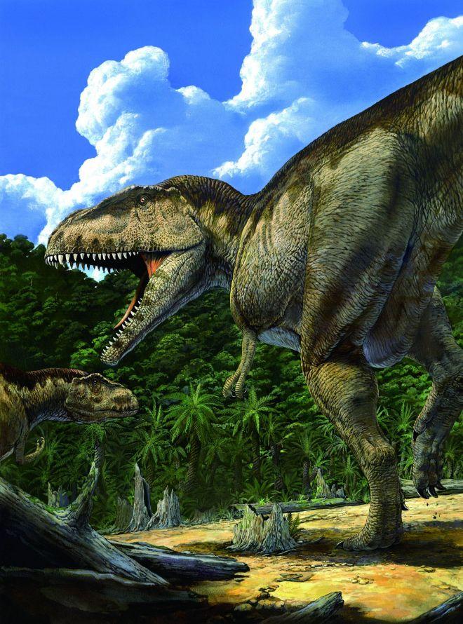 国立科学博物館などで開催された「大恐竜展~知られざる南半球」で描かれたマプサウルス©Akio Itou