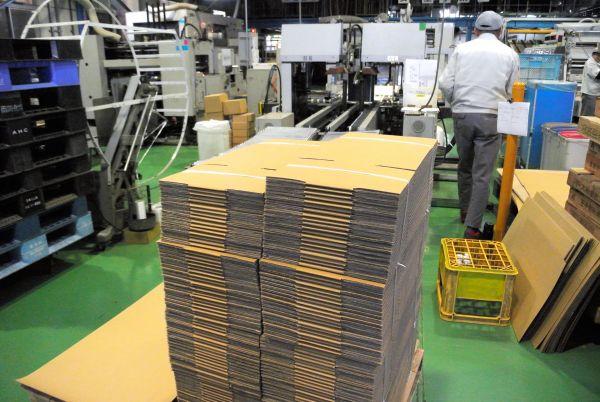 Jパックスが製造した、段ボール簡易ベッドにも使われる通称「ミカン箱」=大阪府八尾市、伊藤弘毅撮影
