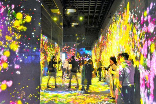 東京・お台場にあるデジタルアートの常設展示施設「チームラボ ボーダレス」。壁や床一面に色とりどりの花が乱れる=佐藤常敬撮影