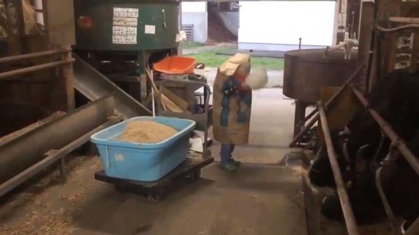 話題になっている「餌袋マン」動画の一場面。雷に反応して持っていたボウルを……