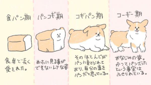 食パンからコーギーに変化する様子を描いたイラスト