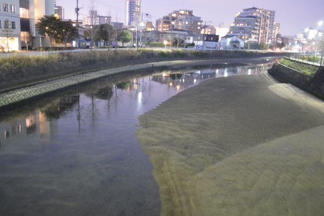 ヤリマンボウが遡上していった樋井川