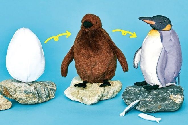 これが「オウサマペンギン3変化ぬいぐるみ」