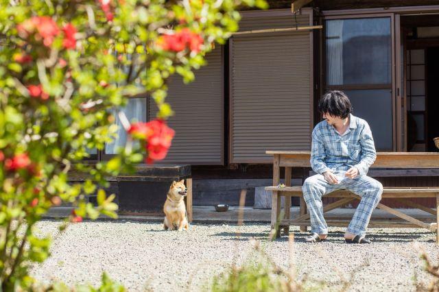 映画「しゃぼん玉」のワンシーン。市原悦子さん演じる椎葉スマの飼い犬・ゴンとして映画に登場したシバイヌのチョコ。林遣都さんとのシーンが多いです©2016「しゃぼん玉」製作委員会