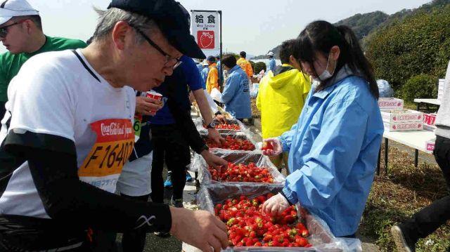 静岡特産のいちご。静岡マラソンの途中でふるまわれることも=2017年