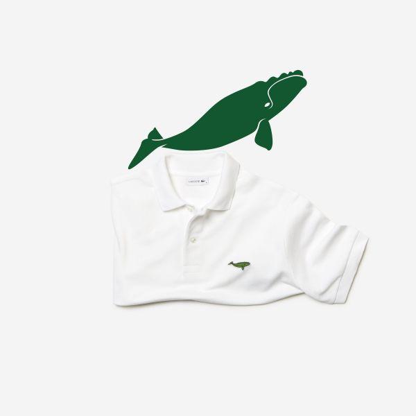 【ニューヨーク ブロードウェイ店】タイセイヨウセミクジラ=生息数444頭