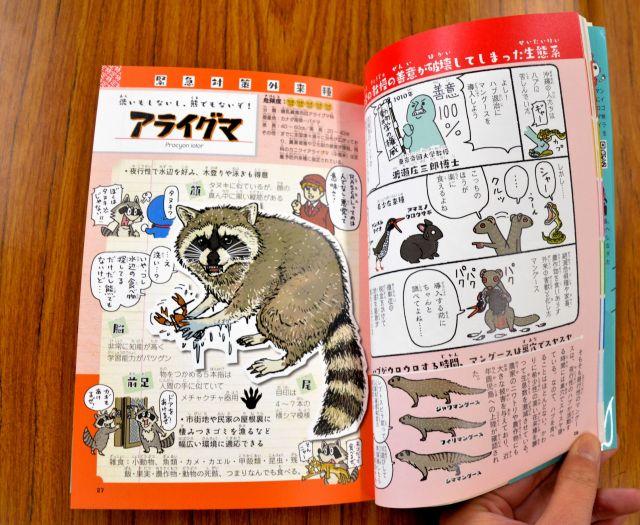 アライグマのページ(左)