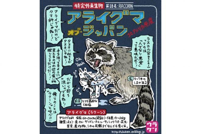 「『タヌキに似てるがタヌキじゃねー!」というセリフとともに描かれるアライグマ=ウラケン・ボルボックスさん提供