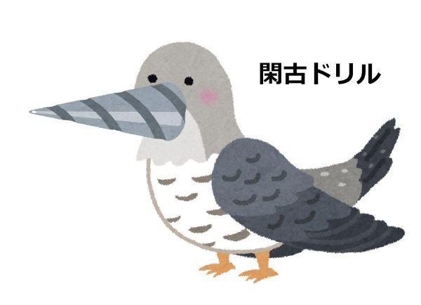 こちらが「閑古ドリル」です。ヒマすぎて「ヒマ=閑古鳥る」という言葉から生まれました