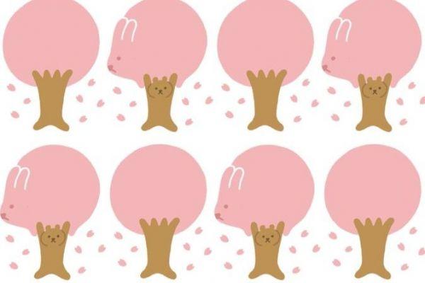 桜にまざるウサギ&熊柄