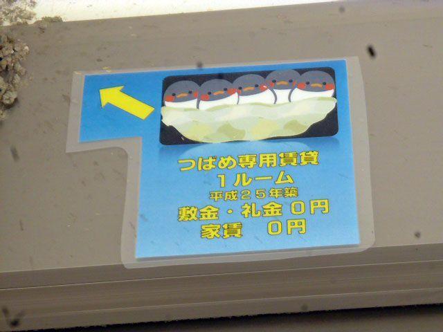 ツバメの巣があることを知らせるユニークな貼り紙
