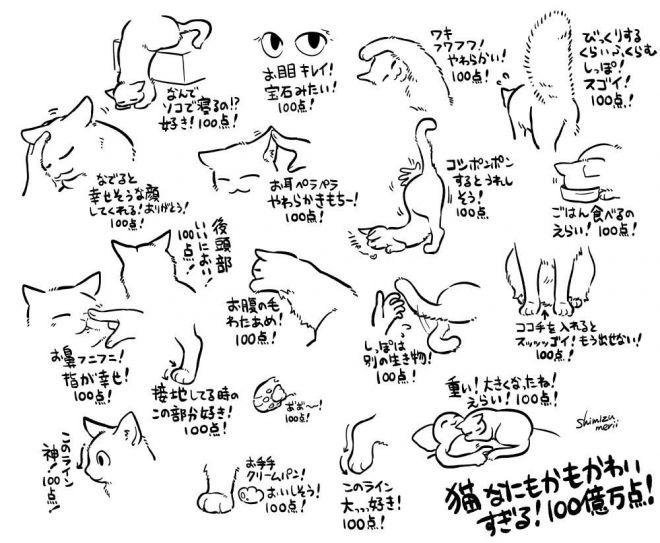 猫を可愛いと思うポイントを描き連ねたイラスト