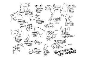 猫はどうして可愛いの? 「愛すべき19の特徴」が話題、作者に聞いた