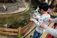 動物園でペンギンにエサをあげる長男。休日はできる限り家族で過ごすようにしている