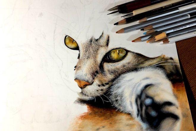 制作途中の様子。色鉛筆で猫を描いています
